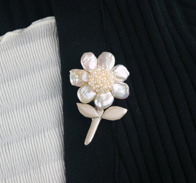 真珠花の画像1枚目