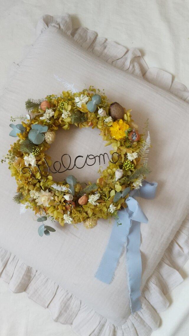 グリーンロゼカラーのwelcome wreath(グリーンドルチェ)リース プリザーブドフラワードライフラワーの画像1枚目