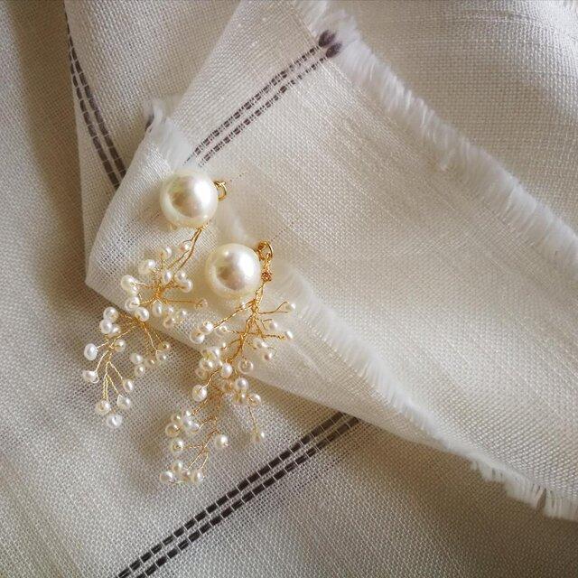 スパークリング パールの耳飾り 貝パール ☆ 14kgfポスト ☆イヤリング変更可の画像1枚目