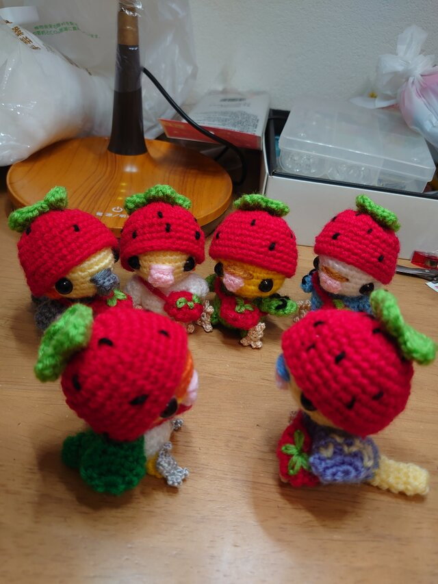 イチゴの帽子を被ったインコ(セキセイインコ、オカメインコ)受注の画像1枚目