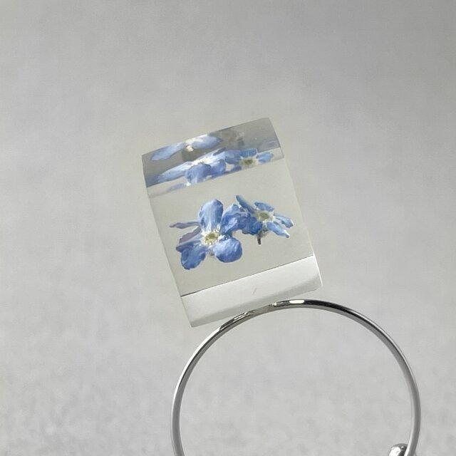 勿忘草のコイルリング シルバーカラー(無料ギフトラッピング, メッセージカード, 誕生日プレゼント)の画像1枚目