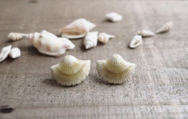 貝殻の耳飾り(イヤリング)の画像1枚目