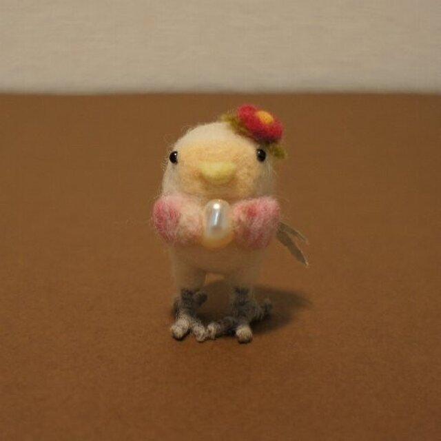 小鳥のおんなのこの画像1枚目