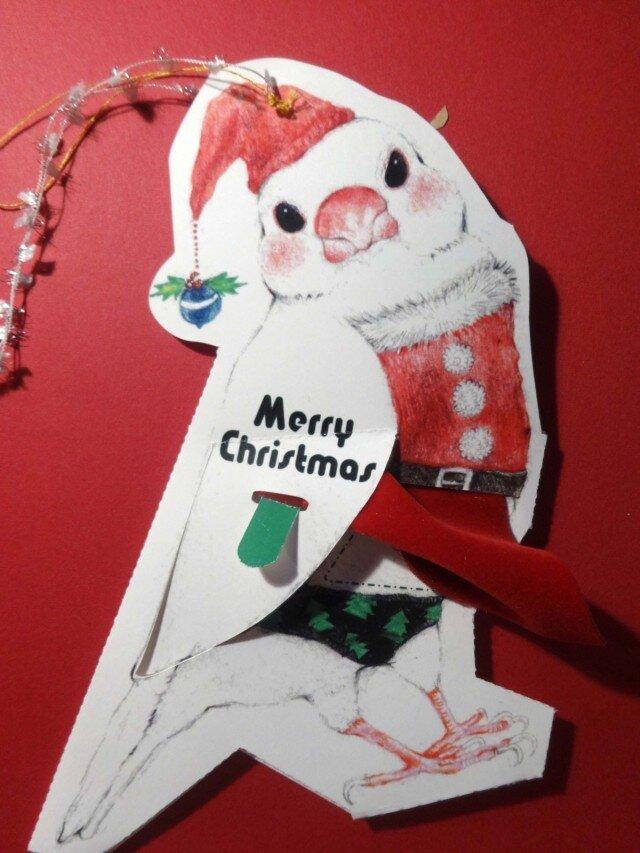 サンタコスプレ文鳥カードの画像1枚目