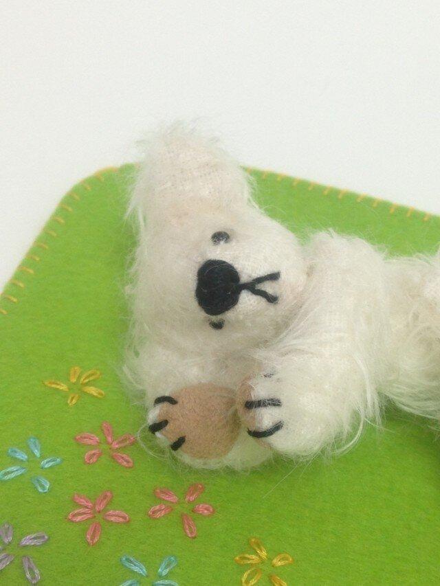 Spring Teddyの画像1枚目