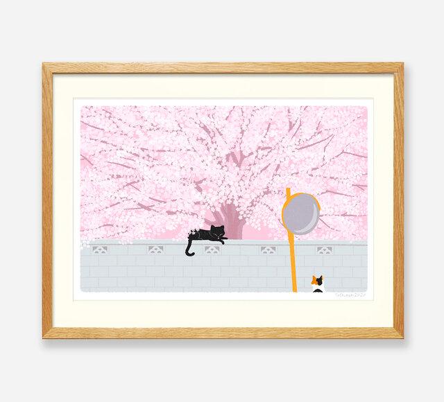 イラストフレーム(04.桜の樹の下で)の画像1枚目