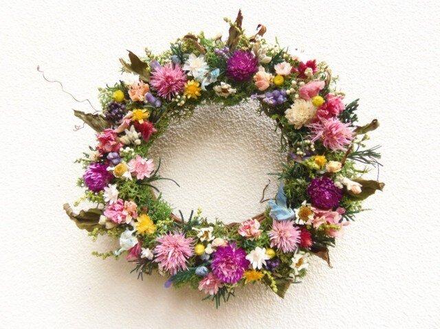 野の花のミニリース IIIの画像1枚目