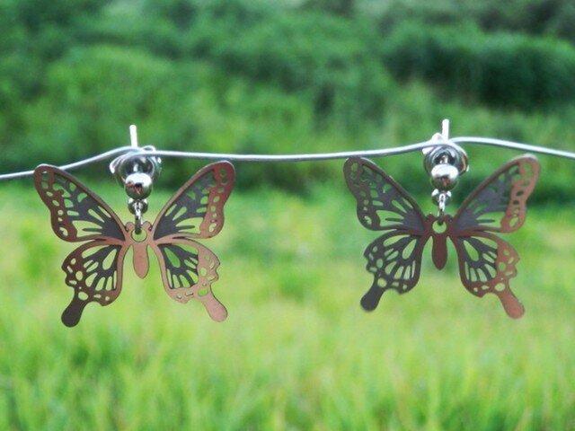 cometman 透かし 蝶(チョウ)の羽のピアスorイヤリングの画像1枚目