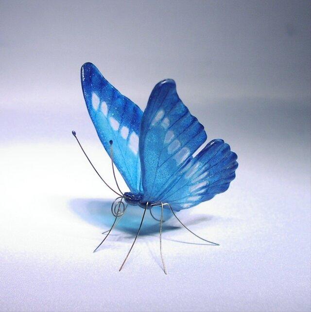 《再販》ガラスの蝶 モルフォの画像1枚目