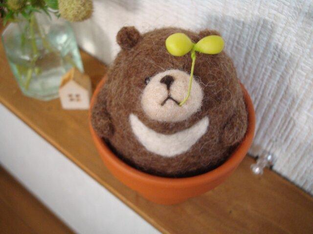 ツキノワのクマにょっきん(L)の画像1枚目