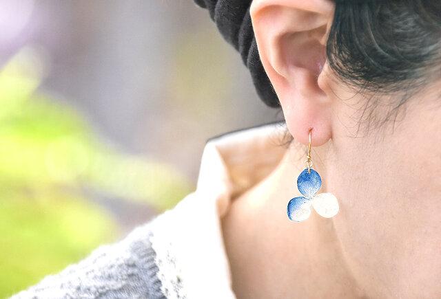 アジサイ【S/藍染】3枚花弁のピアス 14kgf /イヤリングの画像1枚目