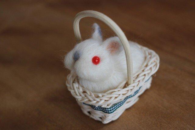 カゴ入り羊毛うさbaby♡ネザーちゃんの画像1枚目