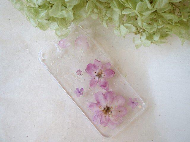 iPhone5 5s カイドウサクラ 桜 さくらの画像1枚目