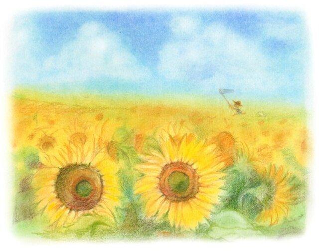 夏休みのひまわり畑の画像1枚目