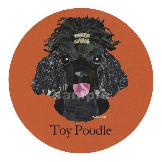 トイ プードル/黒《犬種名ステッカー/小型犬》の画像1枚目