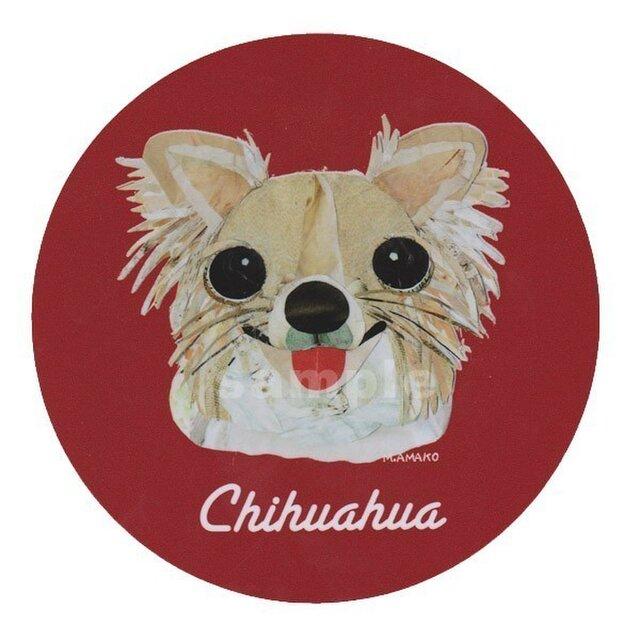 チワワ/ロングコート《犬種名ステッカー/小型犬》の画像1枚目