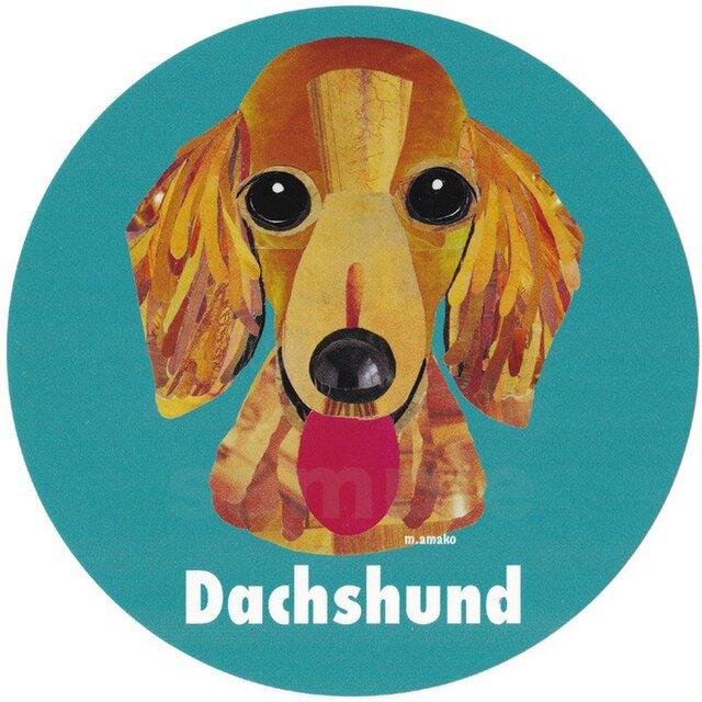 ダックスフンド1《犬種名ステッカー/小型犬》の画像1枚目