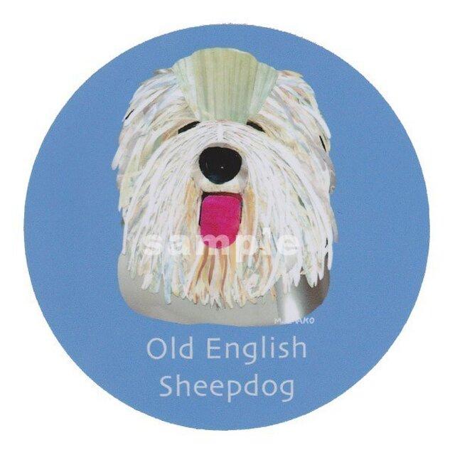 オールドイングリッシュシープドッグ《犬種名ステッカー/大型犬》の画像1枚目