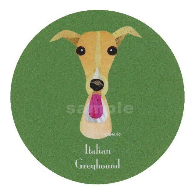イタリアン グレーハウンド/フォーン《犬種名ステッカー/小型犬》の画像1枚目
