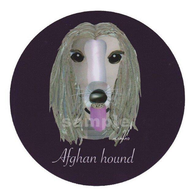アフガン ハウンド《犬種名ステッカー/大型犬》の画像1枚目