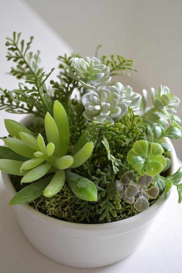kitchen green M(white)の画像1枚目