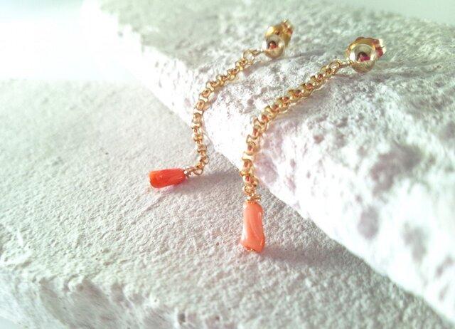 天然Coral (珊瑚)K14GF Chain ピアスの画像1枚目