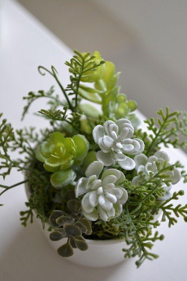 kitchen green S(white)の画像1枚目