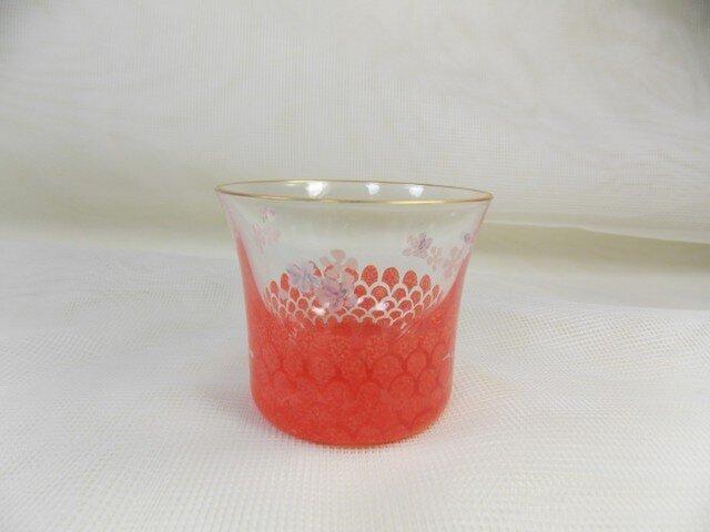 ピンク鱗のミニグラスの画像1枚目