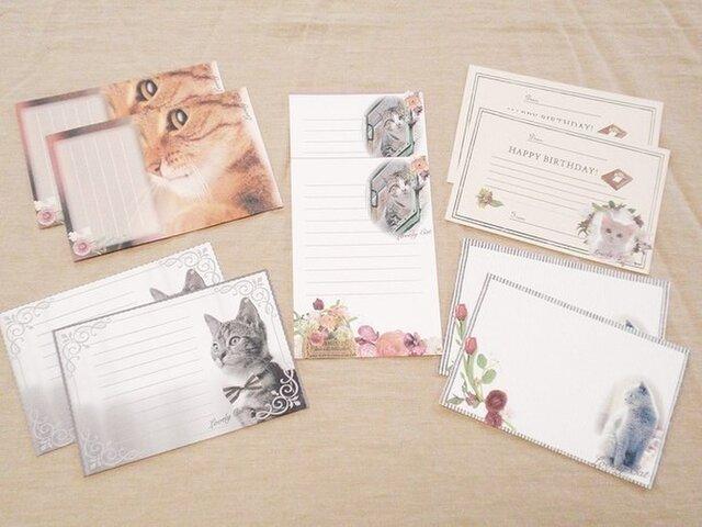 写真全部セット☆猫アニマルポストカードセット★の画像1枚目