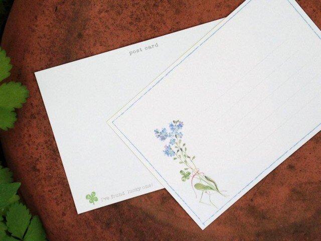 野の花 カード 〜わすれな草〜の画像1枚目