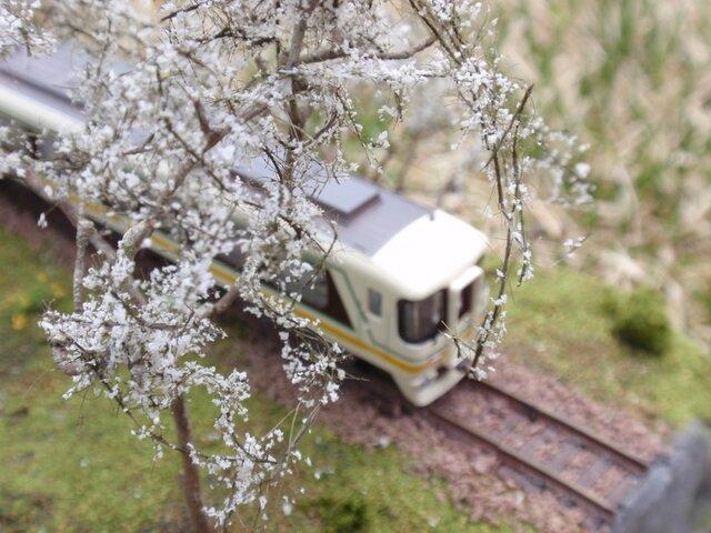 会津の春の画像1枚目