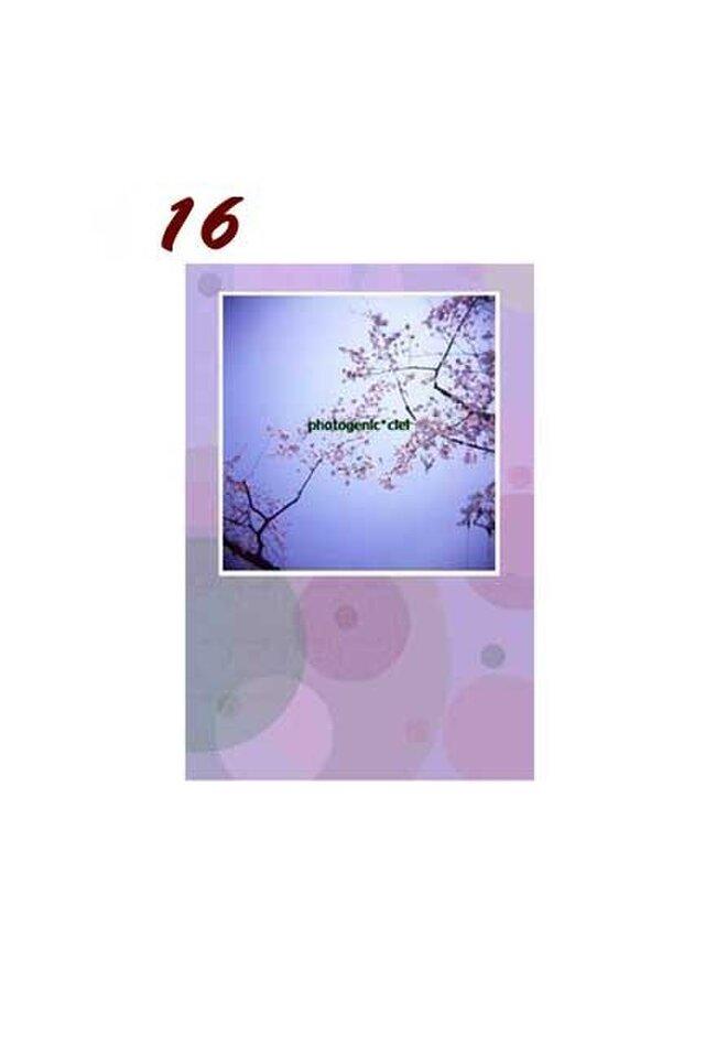 Postcard 2枚セット 【16~20】の画像1枚目