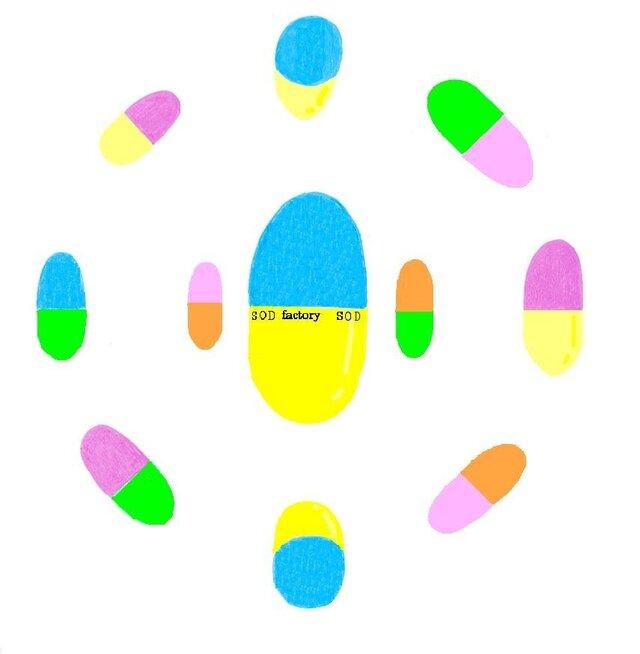 観る薬の画像1枚目