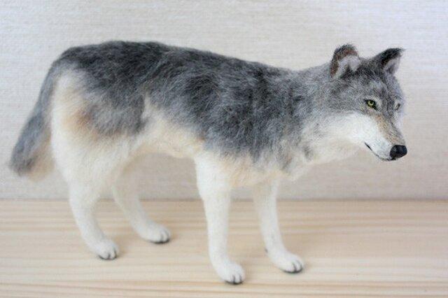 羊毛フェルト オオカミの画像1枚目