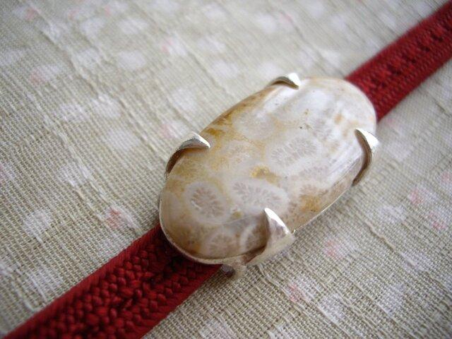 フォッシルコーラル 菱形爪の帯留の画像1枚目