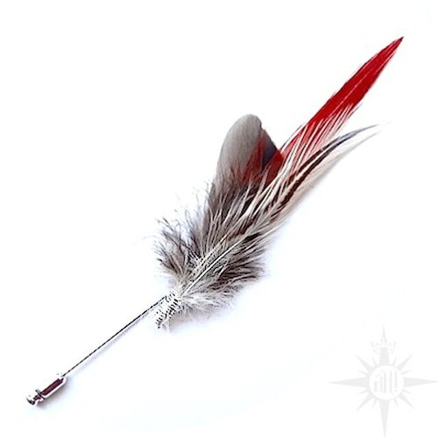 feather hat pin -red x brown-の画像1枚目