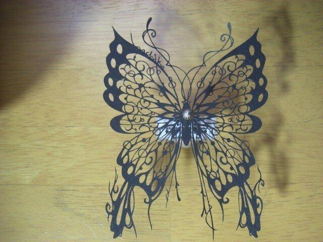 切り絵蝶の標本(Animae dimidium meae)の画像1枚目