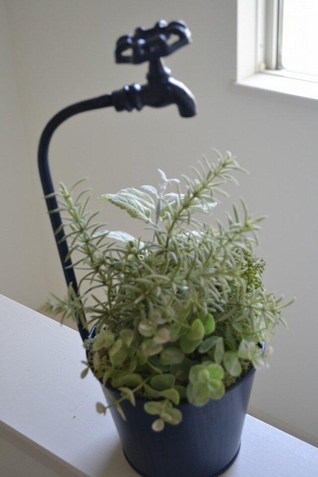 Herb garden (faucet)の画像1枚目