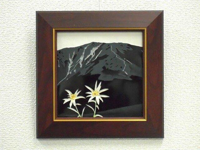 懐かしの山・思い出の花シリーズ「早池峰山・ハヤチネウスユキソウ」の画像1枚目