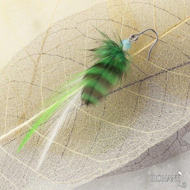 羽根のピアス オリジナル・フェザーピアス サージカルステンレスの画像1枚目