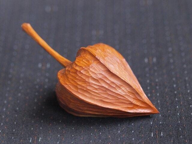 木のほおづき (大)イチイの画像1枚目