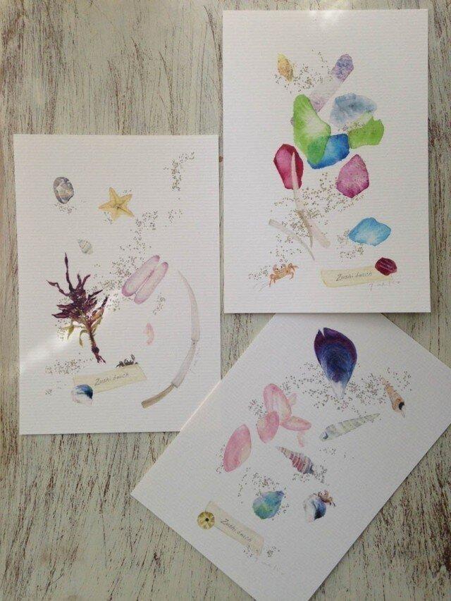 海がくれたもの 〜貝殻のカード3の画像1枚目