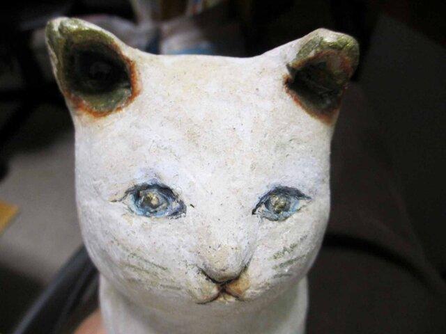 陶猫☆聖五月の画像1枚目