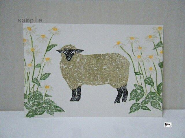 葉書〈クリザンティマムと羊-3〉の画像1枚目