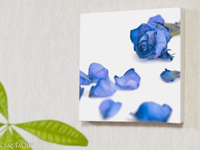 ファブボ「Blue Rose」(L)の画像1枚目