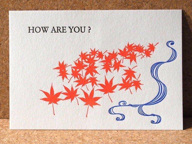 レタープレスカード紅葉/3枚セットの画像1枚目