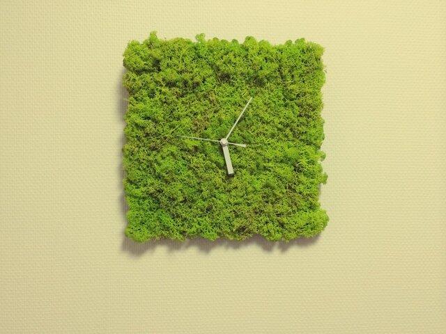 北欧ツンドラモス時計の画像1枚目