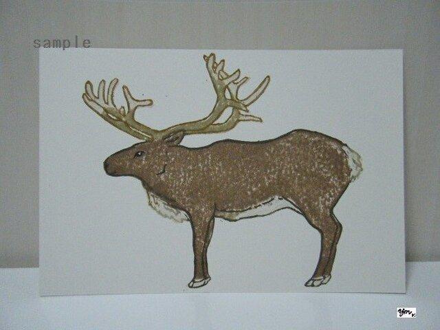 葉書〈森の動物 トナカイ〉の画像1枚目