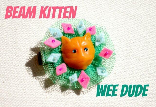 beam kittenの画像1枚目