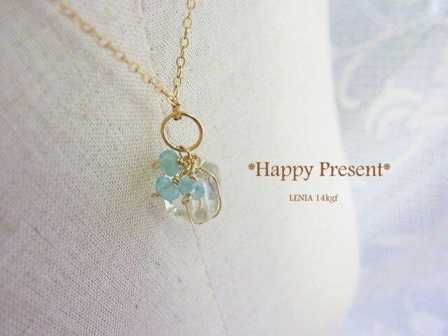 Happy Present 14kgfの画像1枚目
